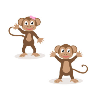 Set of isolated friendly monkeys. The symbol of the year 2016.